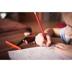 How to get kids to do homework