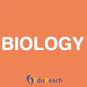 Biology (0)