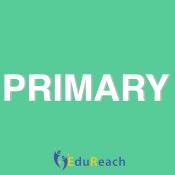 Primary (118)