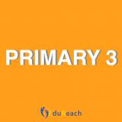 Primary 3 (5)