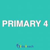 Primary 4 (8)