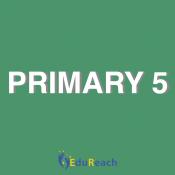 Primary 5 (7)